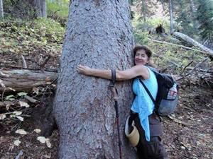 About Debbie Jorde, Nature Lover, Big Cottonwood Canyon, SLC, UT.
